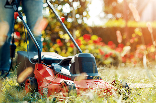 Lawn Mower Leasing